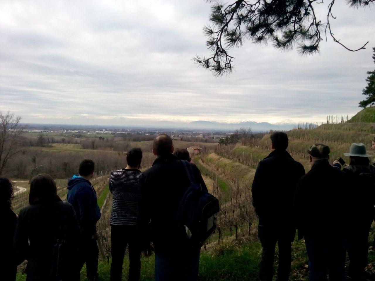 Dalle colline di Rocca Bernarda