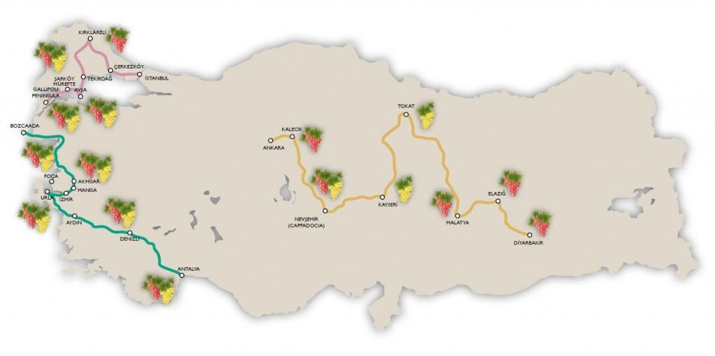 Strade del vino della Turchia
