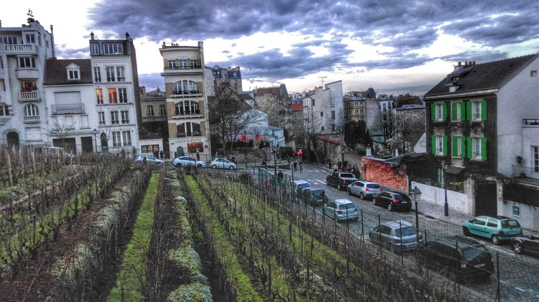 La Vigna di Montmartre
